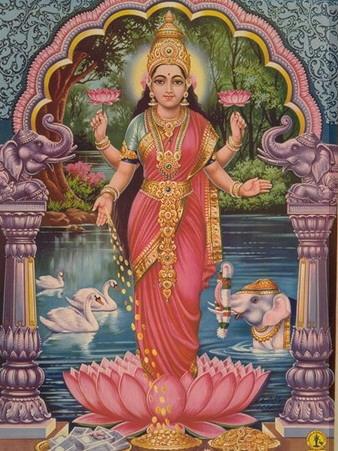 lakshmi-jaina-homepage.jpg